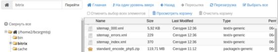 Как настроить sitemap xml в bitrix